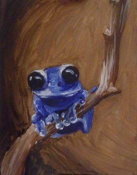 Little frog by Shalada