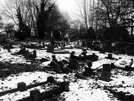 Cemetery of Contrast by Party9999999