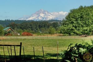 Mt. Hood from the Country by DarrianAshoka