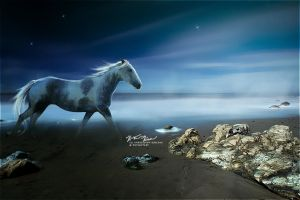 twilight serenity by indecision-designs