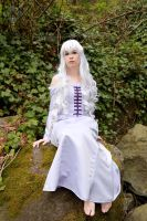The Last Unicorn: The Lady Amalthea by VandorWolf