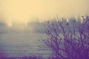 Morning fog 3 by BoxersFracture