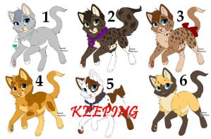 Kitten Adoptables by sarahsunflower12