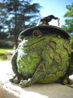 Witch toad is it? by Mindslave24-7