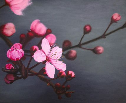 Cherry Blossom by Li-Soro