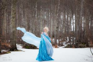 Elsa - Let It Go! by AleSelene