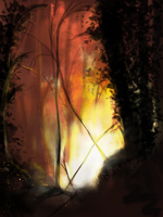 Forest Fire by kittehmeow