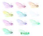 Wing Set 4 png by mysticmorning