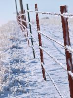 snowy fence 17 by fotophi