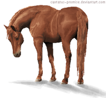 HORSE PIXEL by Cantatus-Promise