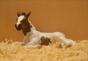 Customized Schleich Foal by Kyyril