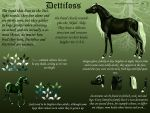 Dettifoss breed sheet UPDATED by Rorelse