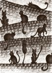 Cats on the wall by exlinum