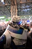 Garrus cosplay by liqsun307