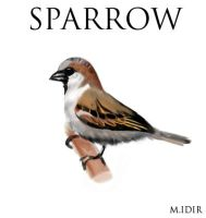 sparrow by IDACHI