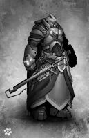 Crusader by FROSTconcepts