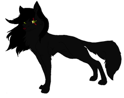 shadowpaw a gift for a friend by Ember-Flame007