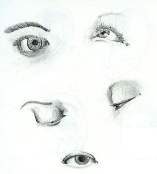 Eye Study by Fro-Daddy