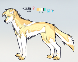 STARR REFERENCE by sweet-shop