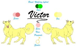 Victor Reference Sheet -Updated- by TheDragonInTheCenter