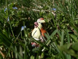 Wild Pidgey appeared by Quilofire