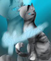 Jayfeather by prussiawashere999
