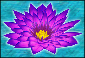 Lotus Flower - 3D Model by Metalraptor