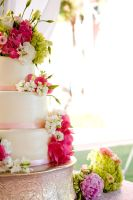 Wedding cake by ncspurlin