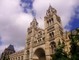 National History Museum by Juinny