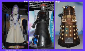 Bad Wolf n The Parting of Ways by Rovanite
