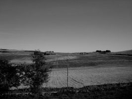 jigsaw fields II by midwinters