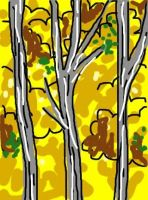 Yellow Birches by monicasycamore17