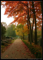 Melancholy by Lady-CaT