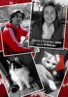 Merry Christmas from the O'Briens by morganobrienart