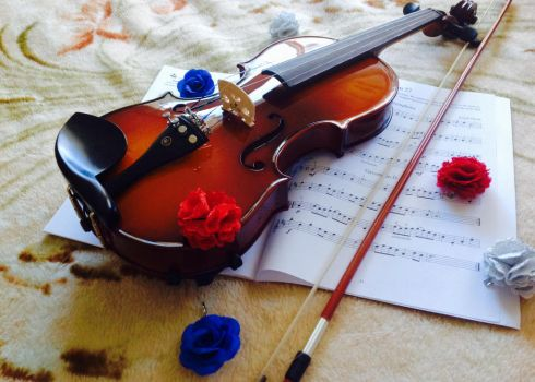 The Violin. by SorciereD-Infloresce