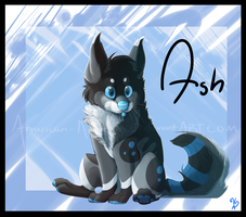 Ash, what are you looking at? by Capntoria