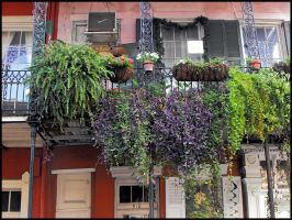 French Quarter Balcony 4 by SalemCat