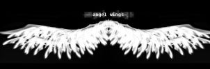 angel wings by sentinalX