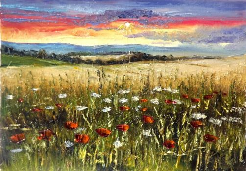 Sunset's Wildflowers by Kasia1989