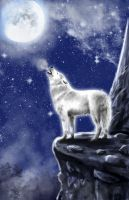 Wolf's Howling in moonlight by haflinger-sama