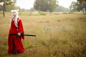 Inuyasha: Where are you? by Lishrayder