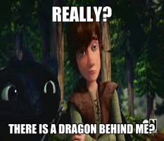 Hiccup doesn't believe you by nightfury10
