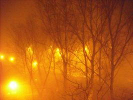 Fog by Storm1287