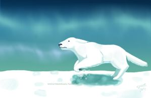 Polar Bear Dog by whoatheresara
