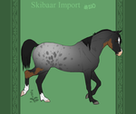 Skibaar Import 210 by horsy1050