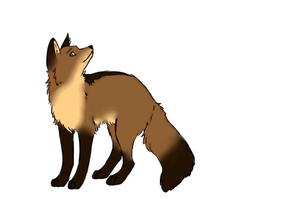 Foxeh! by TheFluffyFoxeh
