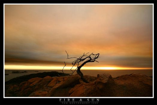 Fire and Sun by TomMontgomery