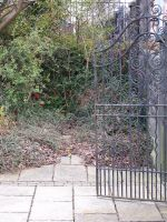 Gate and Foliage by RayvenStock