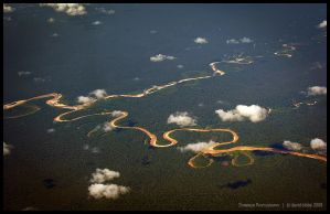 Amazon tributaries by Dominion-Photography