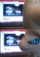 Reshiram is overprotective of me by sudro
